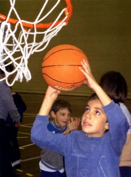 basket 8b.jpg